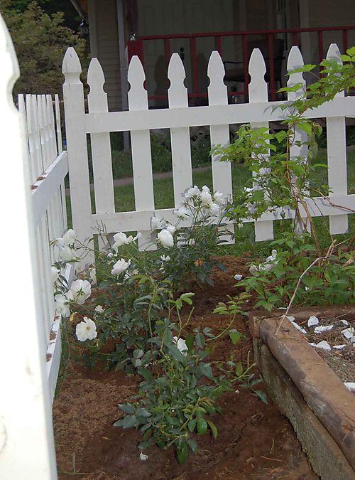 Gardenstarted