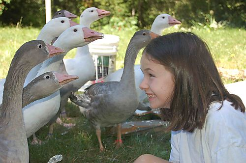 Phoebe&Quackmire2