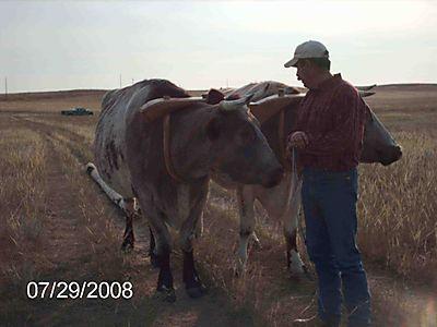 Wyoming13