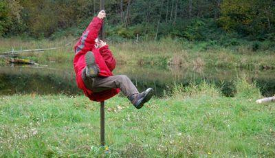 Henryswings