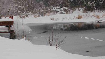 Pondfrozen