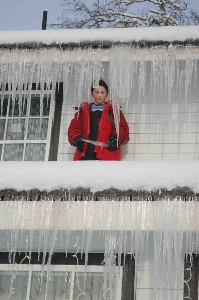 Henryicicles