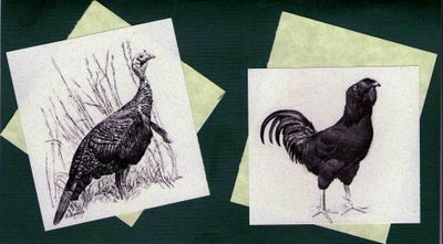 Turkeychickencard