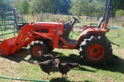 Turkeytractor