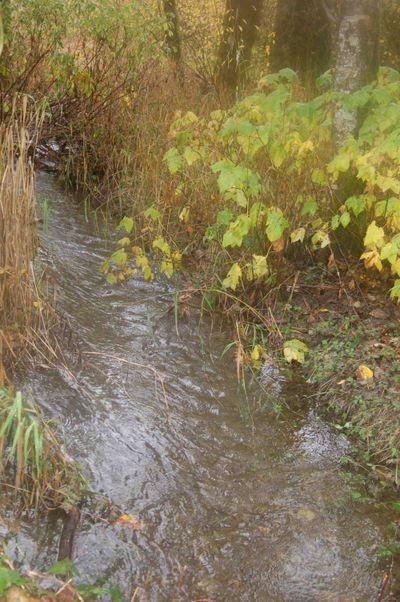 Waterflowing
