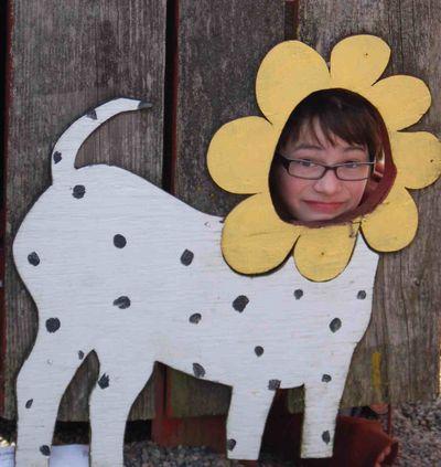 Henrydogflower
